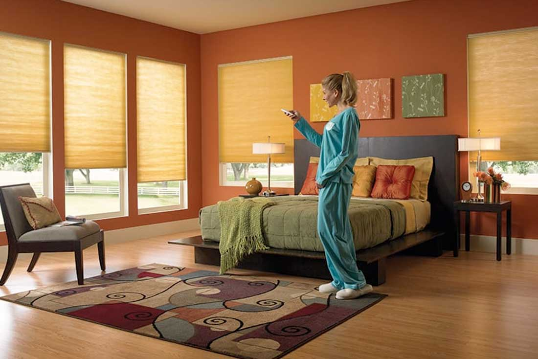 Gallery Motorized Roller Blinds Price Window Motorized
